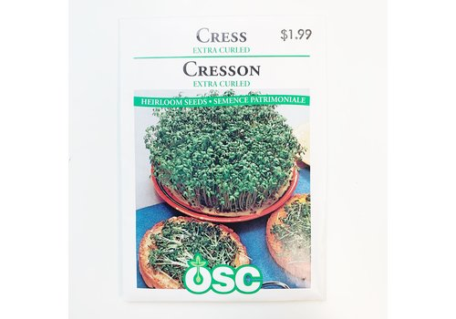 OSC Cress Extra Curled