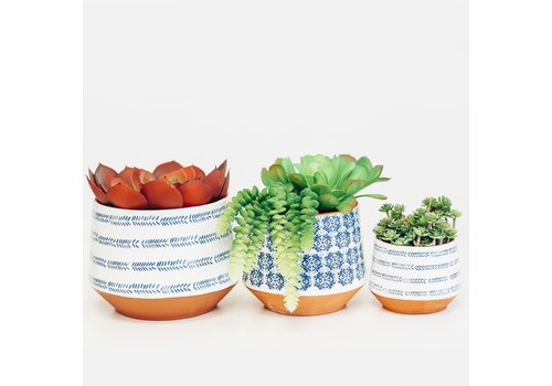 Dutch Growers Terracotta Pot White and Blue