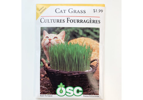 OSC Cat Grass Seeds