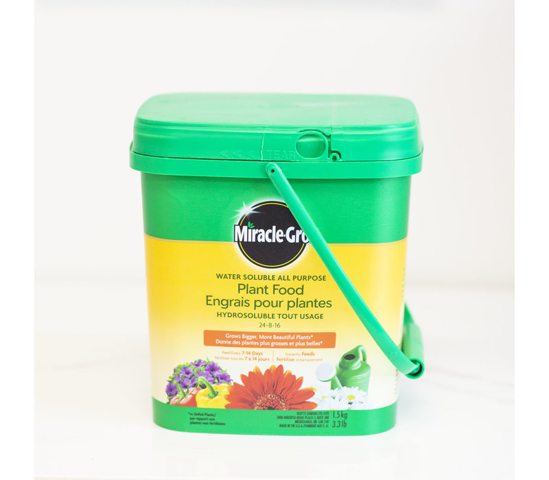 Water Soluble All Purpose Plant Food 24-8-16