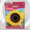 Livingston Sunflower Mammoth Russian Seeds