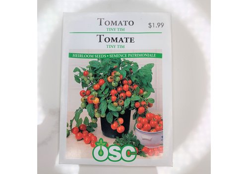 OSC Tomatoes Tiny Tim Seeds