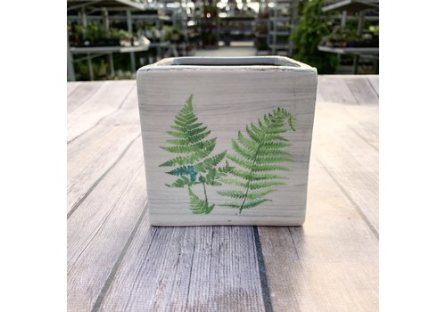 "4"" Dolomite Square Planter With Decal"