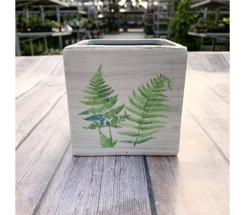 """4"""" Dolomite Square Planter With Decal"""