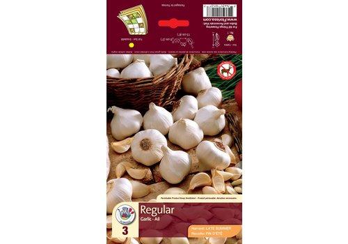 Garlic White Bulbs