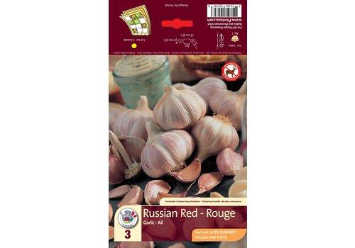 Garlic Red Bulbs