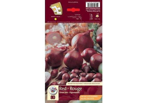 Onion Red Bulbs
