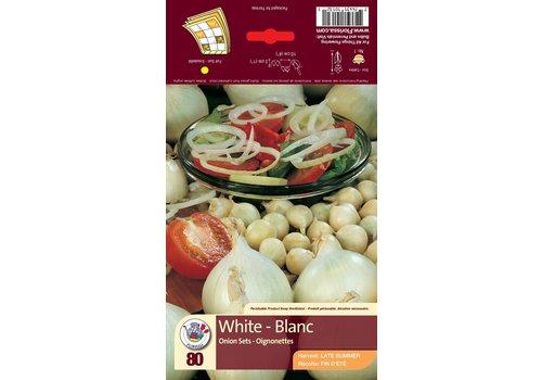 Onion White Bulbs