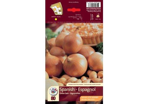 Onion Spanish Bulbs