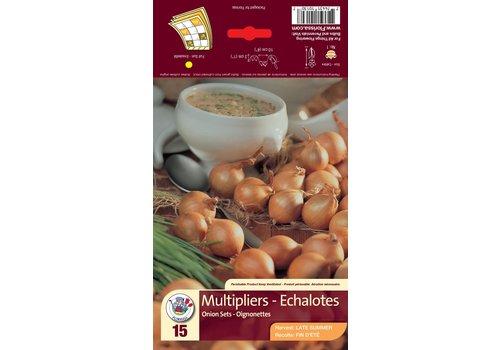 Onion Multiplier Bulbs