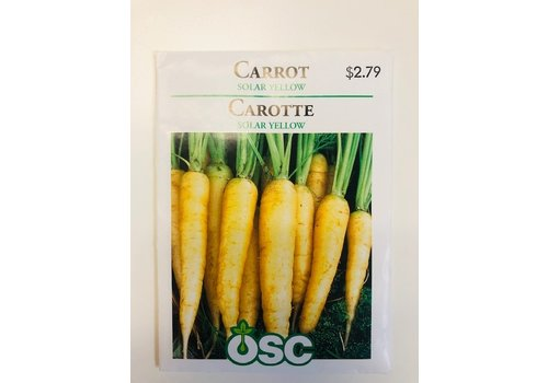 OSC Carrots Solar Yellow Seeds