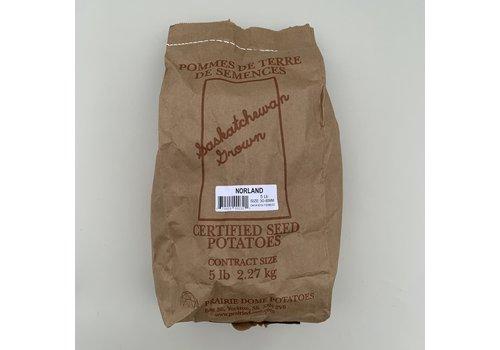 Potato Norland 5lb