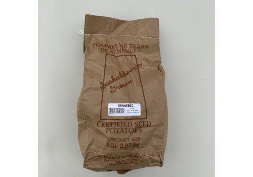 Potato Kennebec 5lb