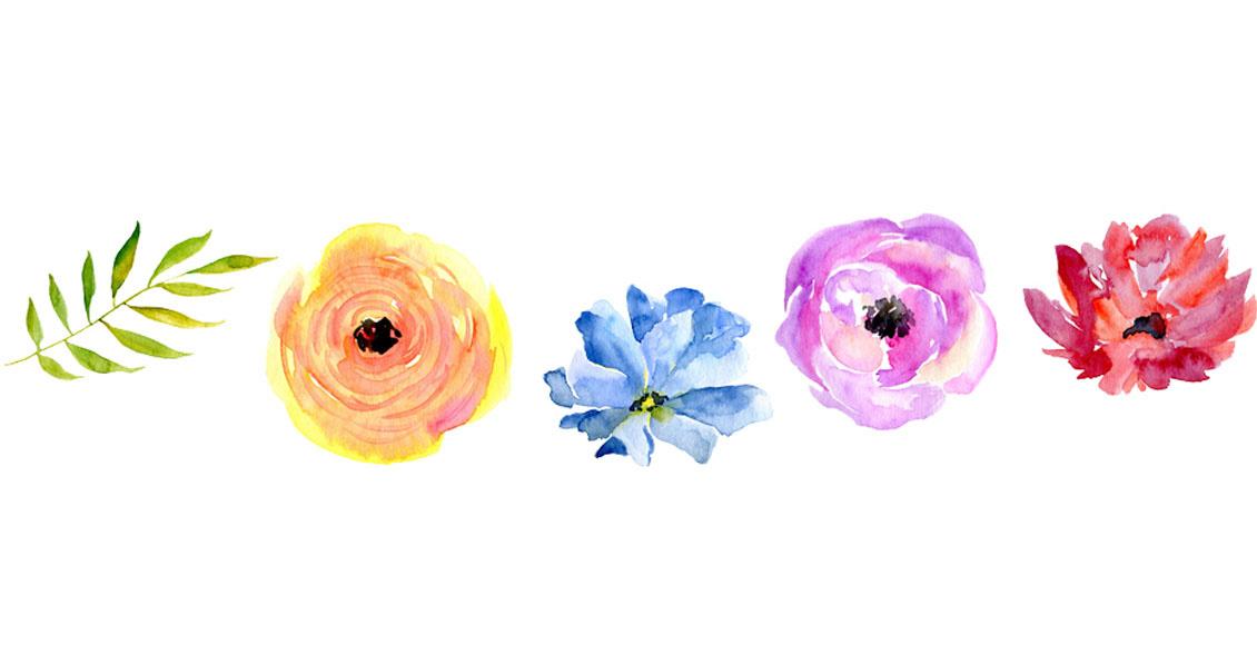 Fertilizing Annuals & Perennials
