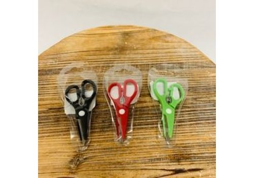 Mini Kitchen Scissors