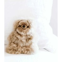 "Alpaca Fur Bear Beige 5.5"""