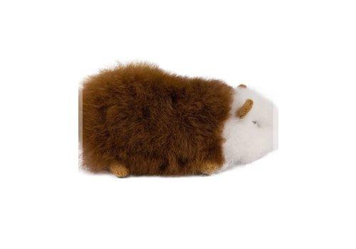 Pokoloko Alpaca Fur Guinea Pig