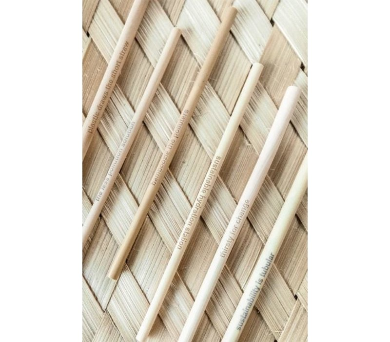 Bamboo Straws Pack of 6