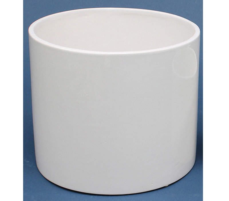 Anissa Ceramic Vase White