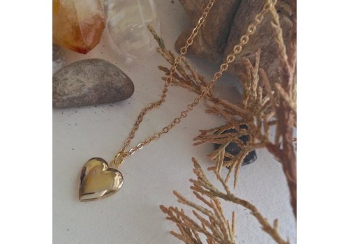 Pika & Bear Total Eclipse of the Heart Tiny Heart Shaped Locket Gold