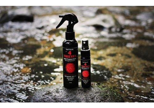 Cloud 9 Naturally 4 Thieves Multi Purpose Spray