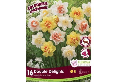 Colourful Companions Tulip Double Delights