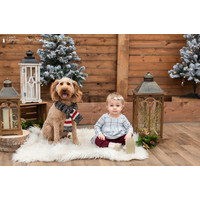 Christmas Photo Session Saturday November 28th