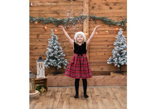 Christmas Photo Session Thursday November 5th