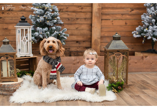 Christmas Photo Session Thursday November 19th