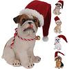 Koopman International Dog With Christmas Hat 14cm