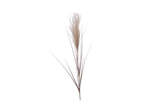 Kaemingk Pampas Grass Stem Natural/Snow