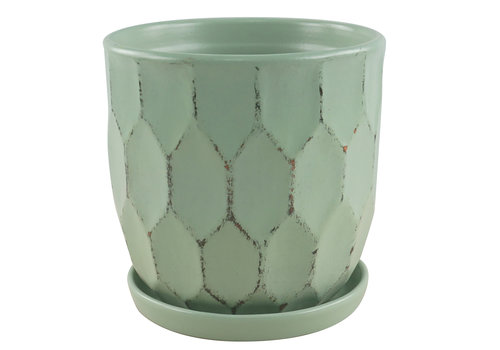 Border Concepts Distressed Honeycomb Pot With Saucer