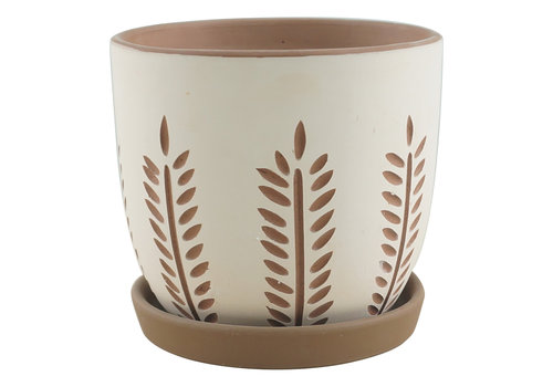 Border Concepts Hallie Reed Planter With Saucer