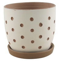 Hallie Dot Planter With Saucer