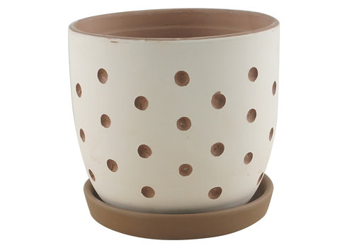 Border Concepts Hallie Dot Planter With Saucer