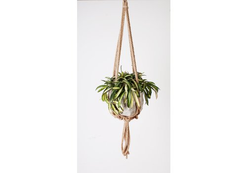 Primitive Planters All Natural Knotted Rope Hanger 36""