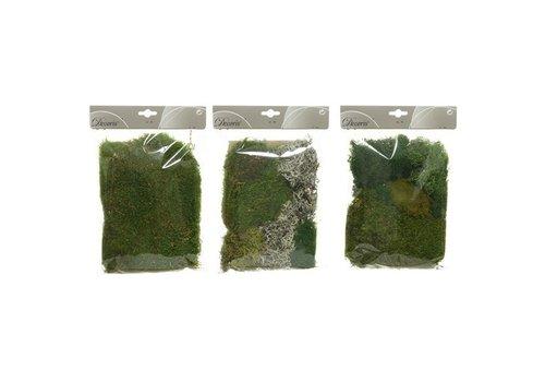 Kaemingk Preserved Moss