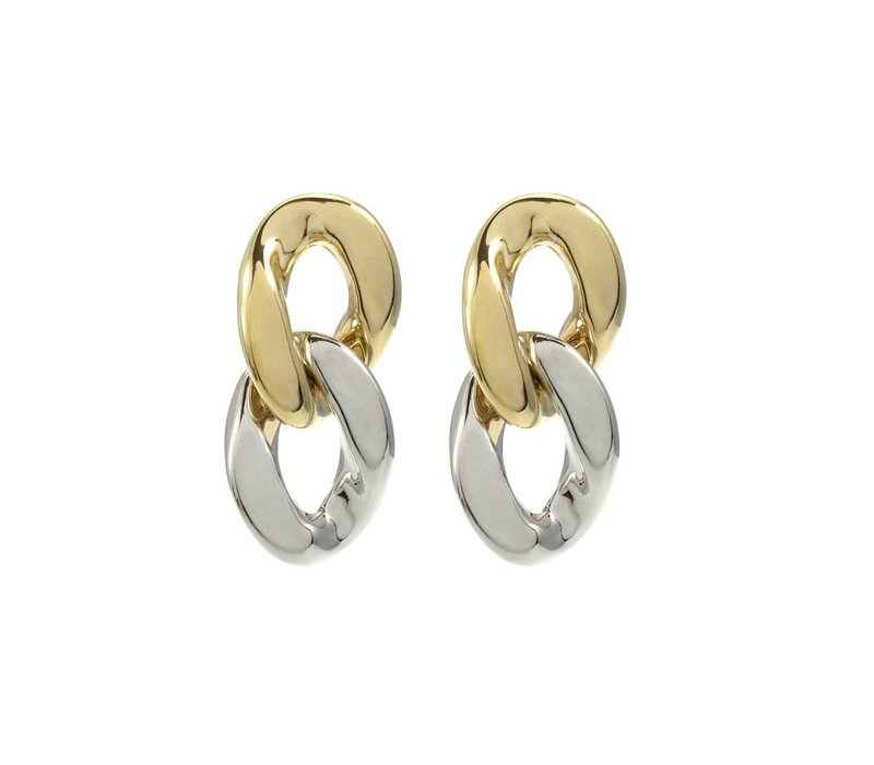 Earring Shiny Gold and Silver