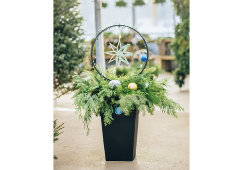 Dutch Growers 'Tis The Season Christmas Urn