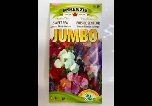 McKenzie Sweet Pea Spencer Giant Mix J
