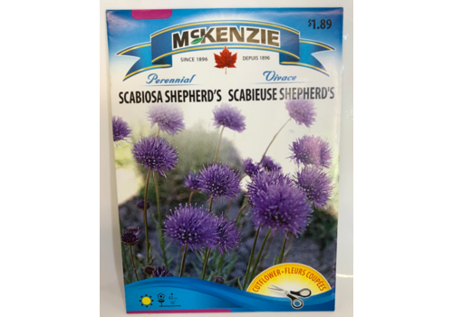 McKenzie Scabiosa Shepherd's