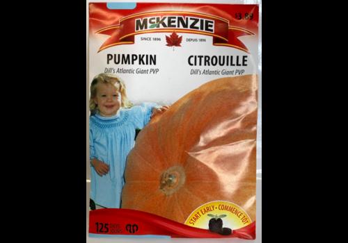 McKenzie Pumpkin Dill's Atlantic Giant