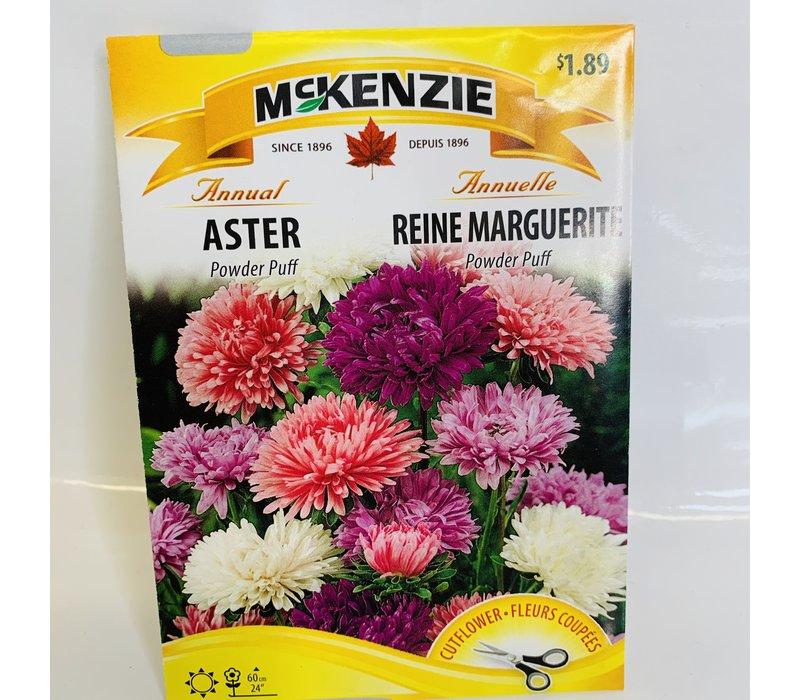 Aster Powder Puff