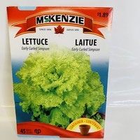 Lettuce Early Curled Simpson