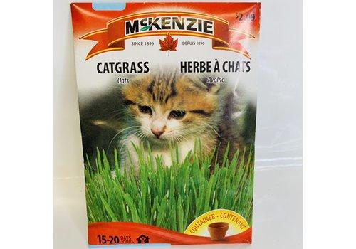 McKenzie Catgrass Oats