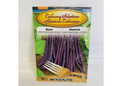 McKenzie Bean Amethyst Purple Filet (B)