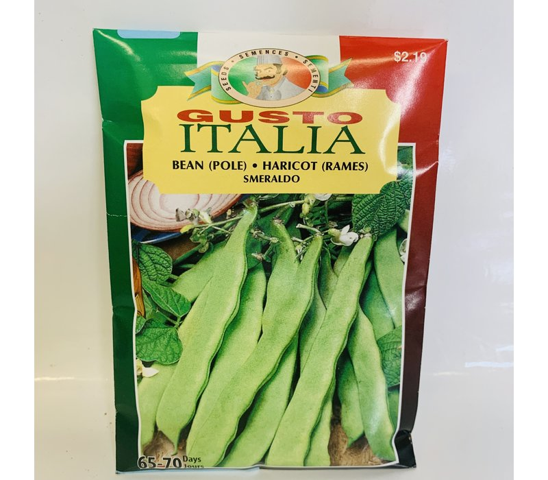 Bean Fava Smeralda
