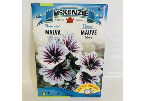 McKenzie Malva Zebrina
