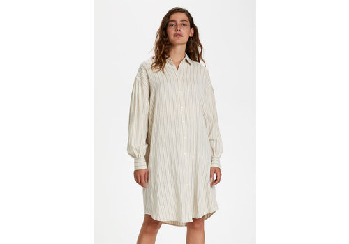 Soaked in Luxury Jules Shirt Dress