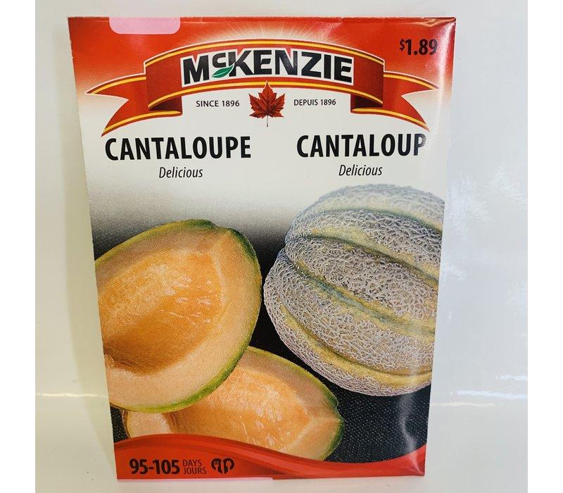Cantaloupe Delicious